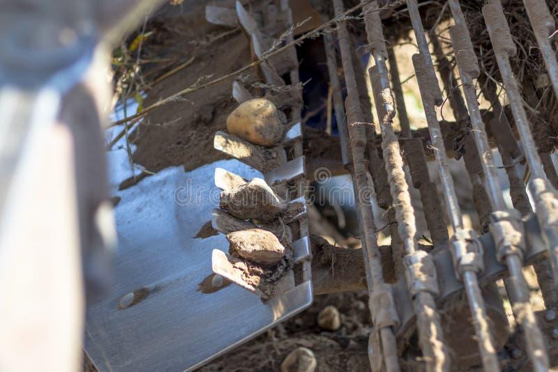 πατάτες συγκομιδής ελκυστήρας προετοιμασία για τη συγκομιδή επιμέρους τμημάτων του τετραγώνου στοκ εικόνα με δικαίωμα ελεύθερης χρήσης