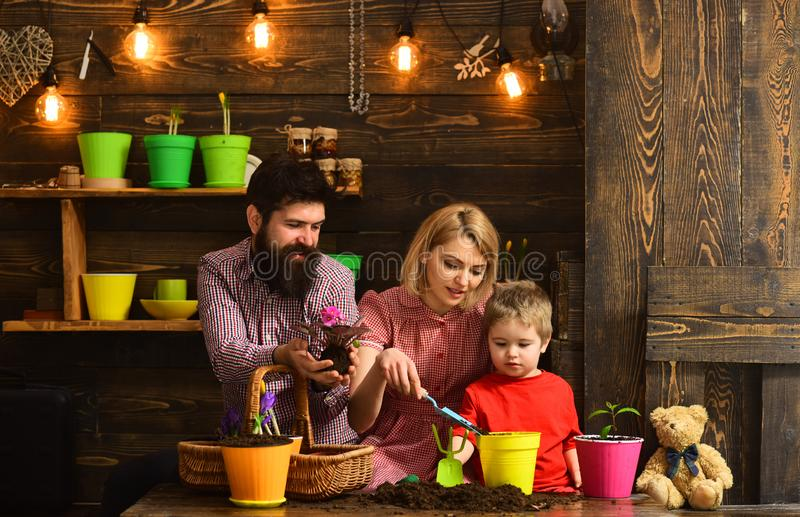 πατέρας και γιος με τη μητέρα Οικογενειακή ημέρα θερμοκήπιο ευτυχείς κηπουροί με τα λουλούδια άνοιξη Πότισμα προσοχής λουλουδιών  στοκ εικόνες