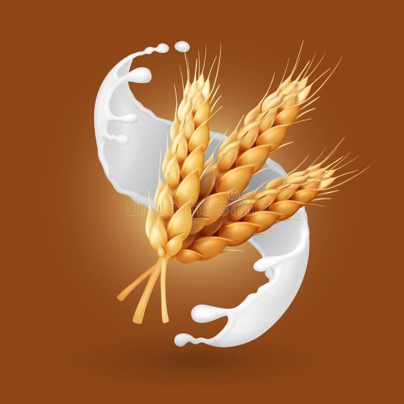 Παφλασμός σίτου και γάλακτος Δημητριακά κριθαριού στην απεικόνιση γιαουρτιού Ρεαλιστικό διάνυσμα διανυσματική απεικόνιση