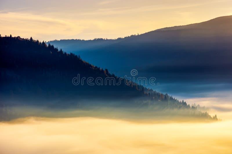 Παχιά ομίχλη επάνω από την κοιλάδα στην ανατολή στοκ εικόνα με δικαίωμα ελεύθερης χρήσης