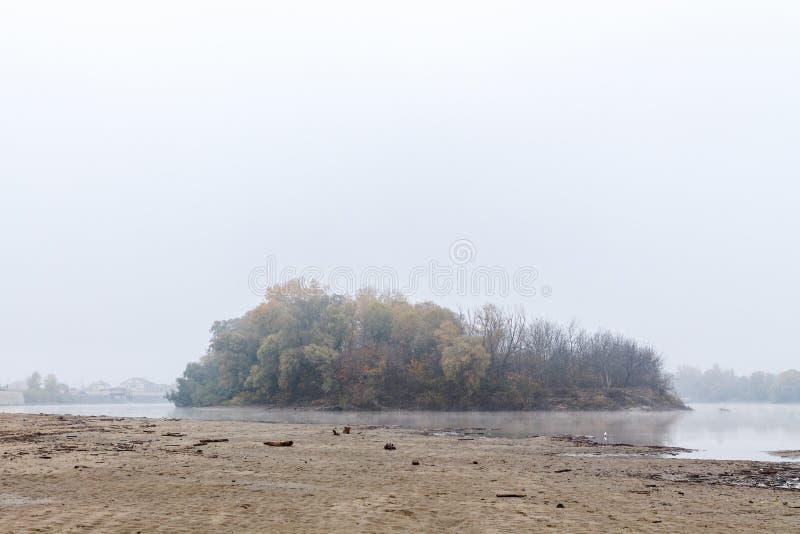 Παχιά ομίχλη στις όχθεις του ποταμού δίπλα στο δάσος στοκ εικόνες με δικαίωμα ελεύθερης χρήσης