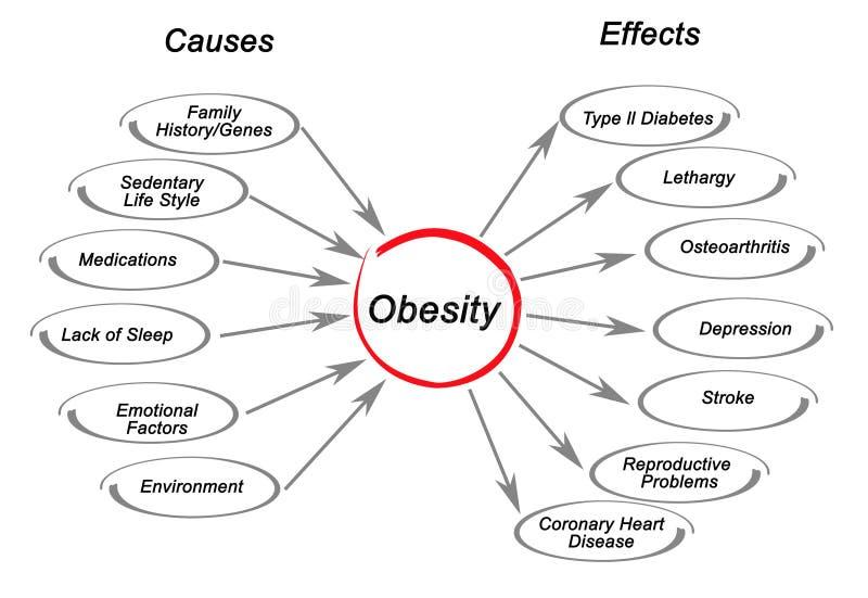Παχυσαρκία: αίτια και αιτιατά διανυσματική απεικόνιση
