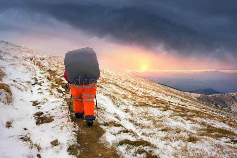 Παχύς τουρίστας θαρραλέος στοκ φωτογραφίες με δικαίωμα ελεύθερης χρήσης