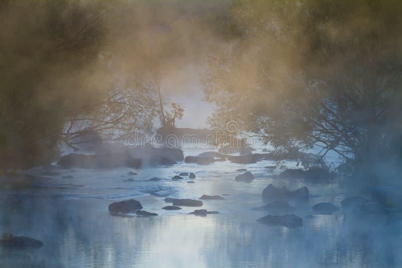 Παχύ κάλυμμα ομίχλης μαγεμένος ποταμός με γρήγορη ροή και πέτρες στα σημερινά, αγριόχορτα δέντρα στις όχθες του στοκ εικόνα