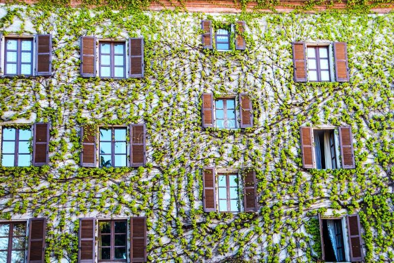 Παλάτι στο burg Neive στοκ εικόνα