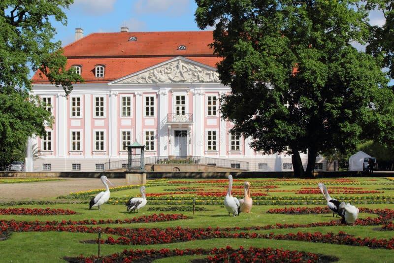 Παλάτι Friedrichsfelde στοκ εικόνες