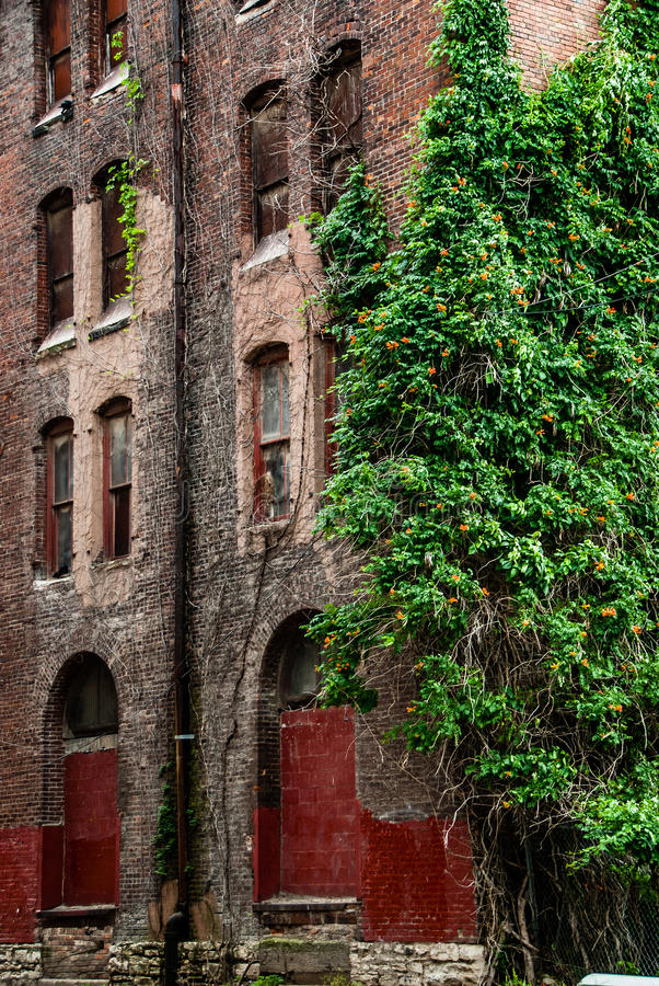 Παλαιά αρχιτεκτονική οικοδόμησης τούβλου στοκ εικόνα με δικαίωμα ελεύθερης χρήσης