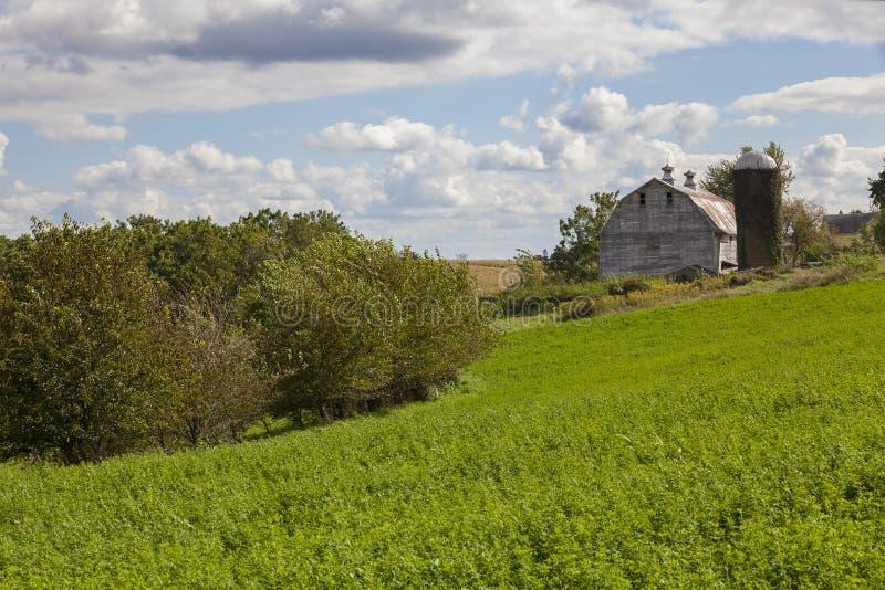 Παλαιά γαλακτοκομικά σιταποθήκη και hayfield στοκ εικόνες