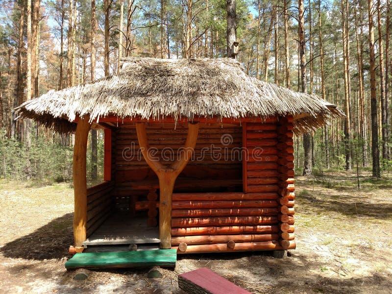 Παλαιά εγκαταλειμμένη καμπίνα κυνηγών ` s στο δάσος της Ουκρανίας στοκ φωτογραφία