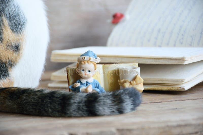 Παλαιά κούκλα σταφίδων με την ουρά ημερολογίων και γατών στοκ εικόνες με δικαίωμα ελεύθερης χρήσης