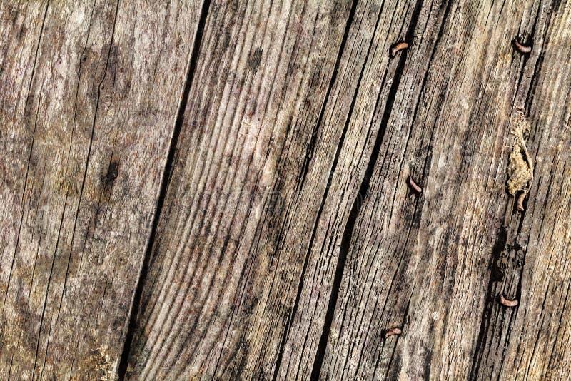 Παλαιά ξεπερασμένη ραγισμένη καρφωμένη Pinewood Floorboards σάπια σύσταση Grunge στοκ εικόνες με δικαίωμα ελεύθερης χρήσης