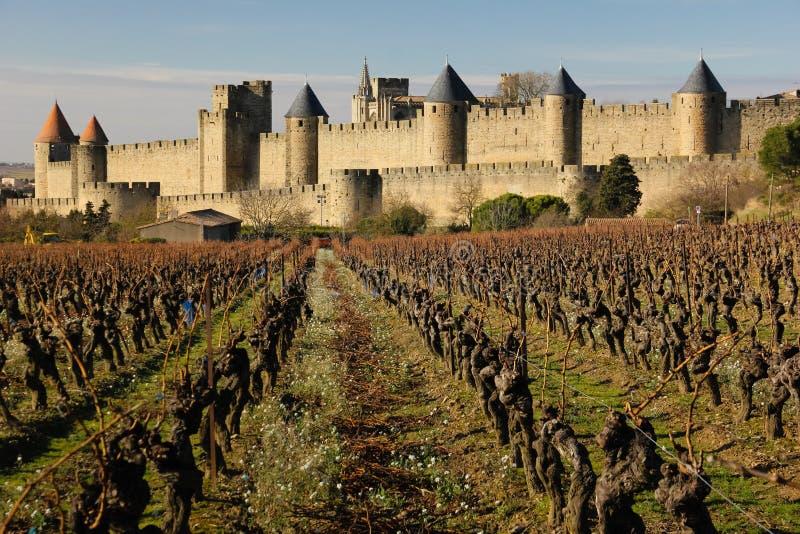 Παλαιά περιτοιχισμένα ακρόπολη και vinyards Carcassonne Γαλλία στοκ φωτογραφία με δικαίωμα ελεύθερης χρήσης