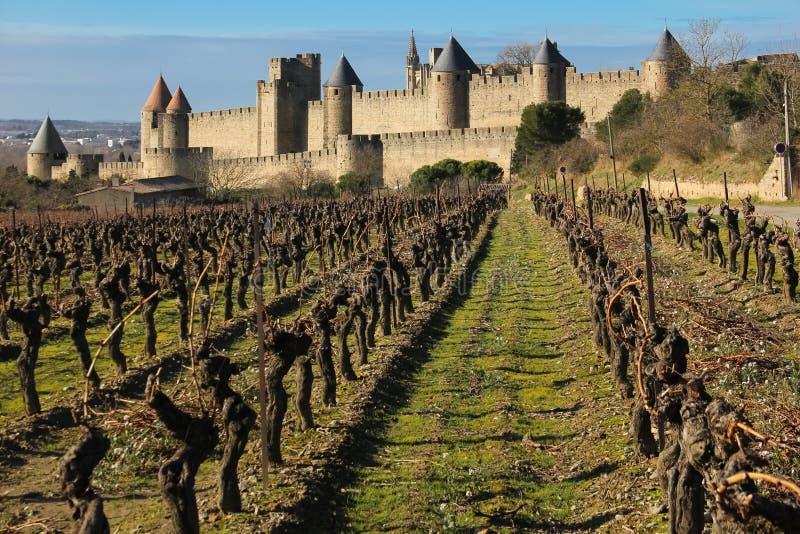 Παλαιά περιτοιχισμένα ακρόπολη και vinyards Carcassonne Γαλλία στοκ φωτογραφίες με δικαίωμα ελεύθερης χρήσης