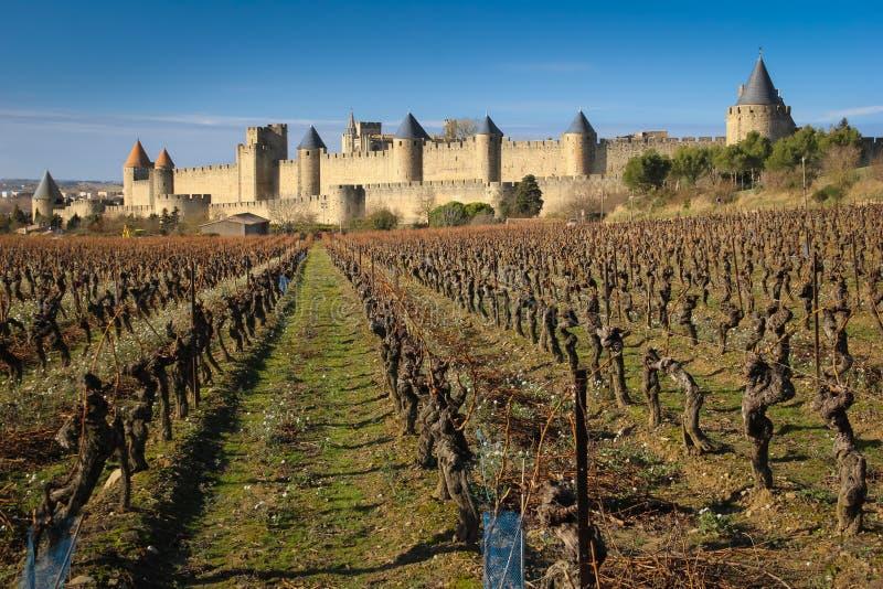 Παλαιά περιτοιχισμένα ακρόπολη και vinyards Carcassonne Γαλλία στοκ φωτογραφία