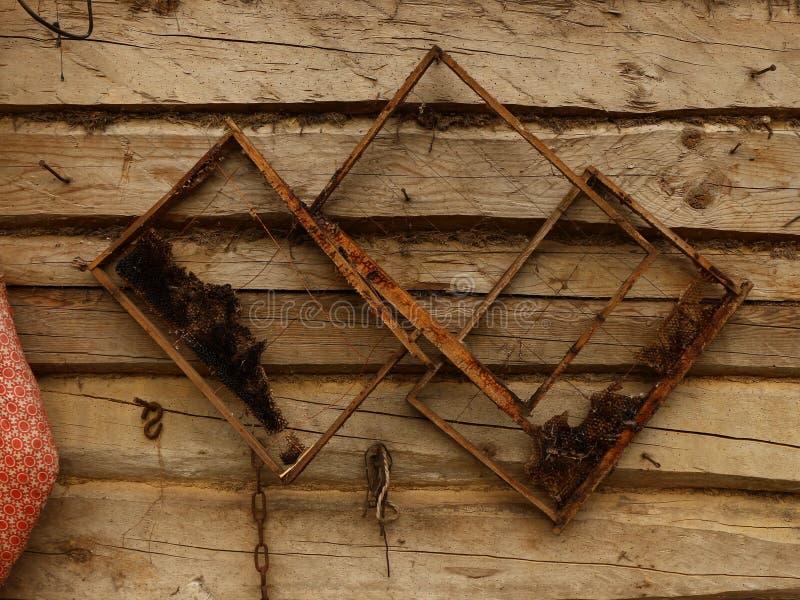 Παλαιά πλαίσια κεριών μελισσών στοκ φωτογραφία με δικαίωμα ελεύθερης χρήσης