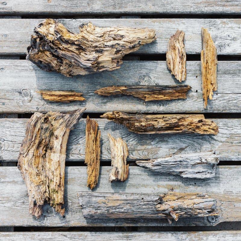 Παλαιά σάπια ξύλινα κομμάτια και τεμάχια στοκ εικόνα με δικαίωμα ελεύθερης χρήσης