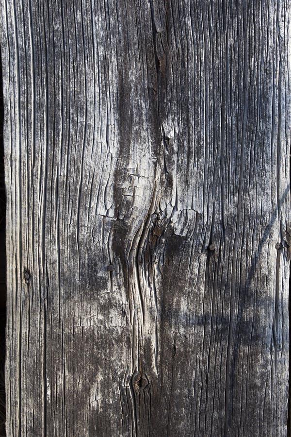 παλαιά σανίδα στοκ φωτογραφία