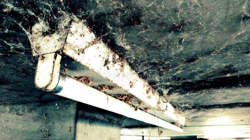 Παλαιοί ιστοί αράχνης στοκ φωτογραφίες