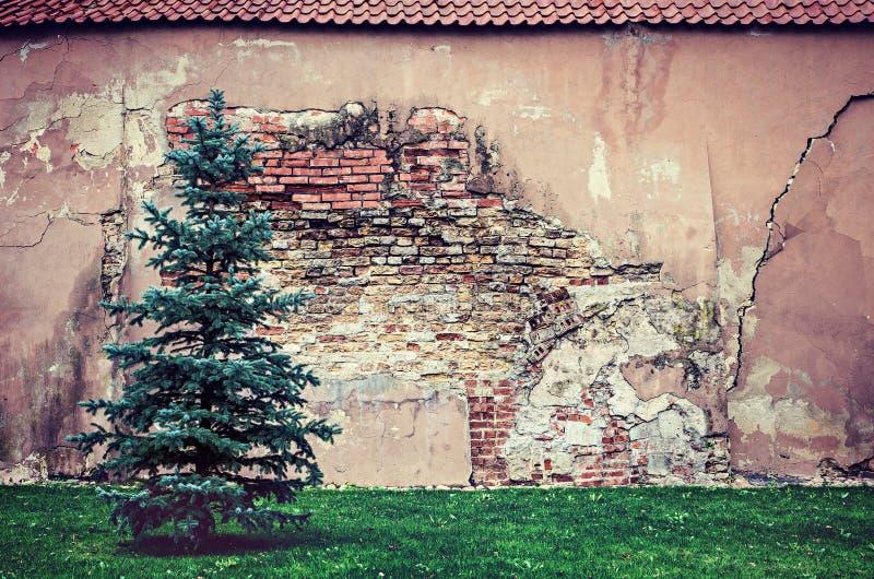 Παλαιός τουβλότοιχος στοκ εικόνες με δικαίωμα ελεύθερης χρήσης