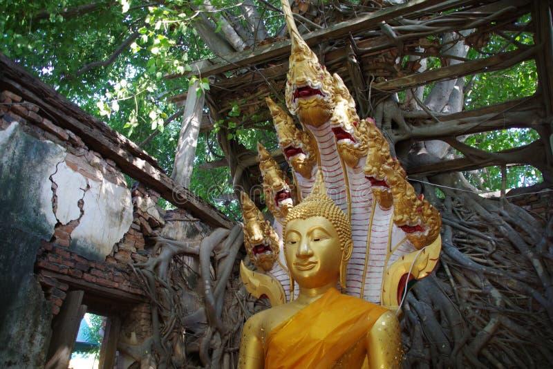 Παλαιό άγαλμα του Βούδα χαλκού ύφους τραγουδημένο στο Wat kra-Tai στοκ φωτογραφίες με δικαίωμα ελεύθερης χρήσης
