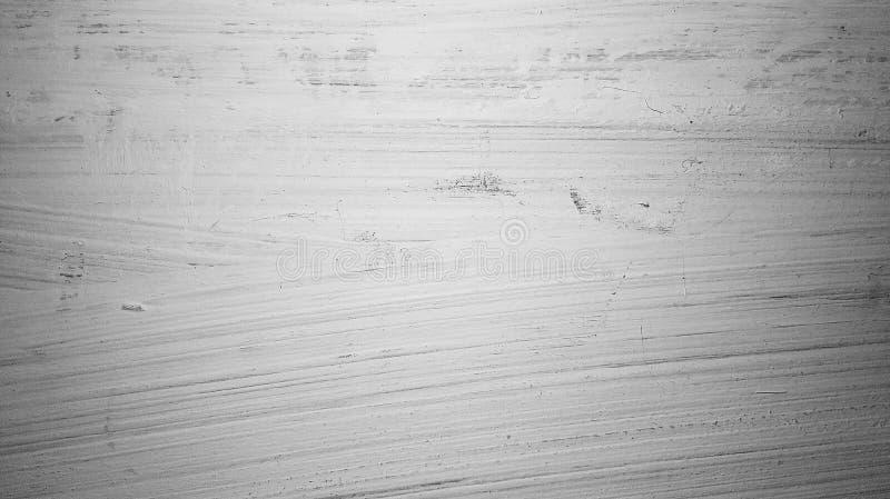 Παλαιό άσπρο δάσος στοκ εικόνα