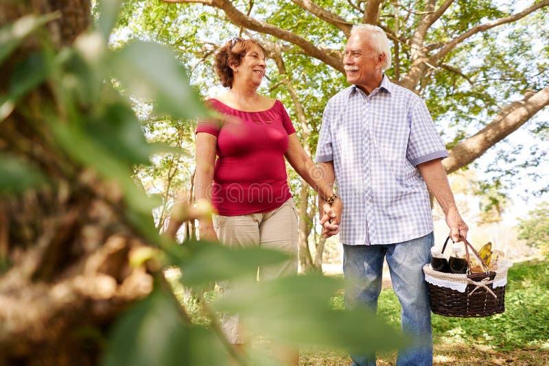 Παλαιό ανώτερο ζεύγος γυναικών ανδρών που περπατά με το καλάθι πικ-νίκ στοκ εικόνες με δικαίωμα ελεύθερης χρήσης