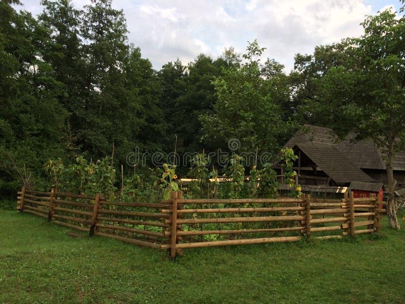 Παλαιό εξοχικό σπίτι με έναν μικρό κήπο ηλίανθων στο Sibiu στοκ φωτογραφία με δικαίωμα ελεύθερης χρήσης