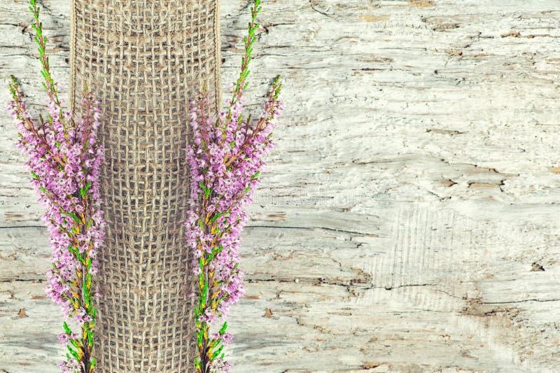 Παλαιό ξύλινο υπόβαθρο με την ερείκη και την κορδέλλα απόλυσης στοκ φωτογραφίες