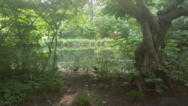 παλαιό πάρκο λιμνών επίπλων χαλκού στοκ φωτογραφία