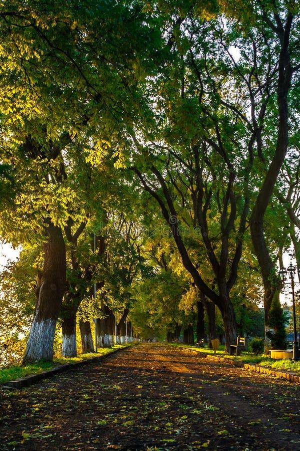Παλαιό πάρκο πόλεων με το φανάρι στοκ φωτογραφία