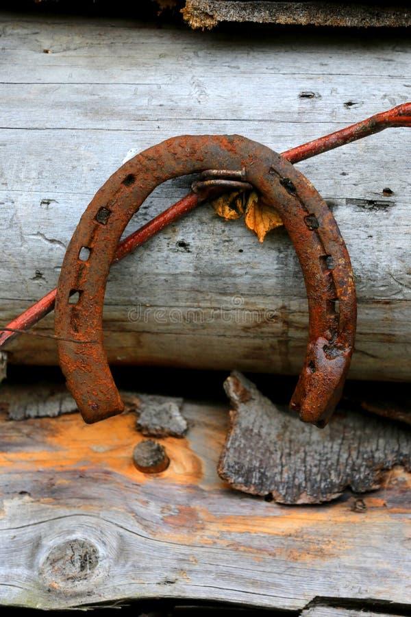 Παλαιό πέταλο στο υπόβαθρο ξύλων στοκ φωτογραφία με δικαίωμα ελεύθερης χρήσης