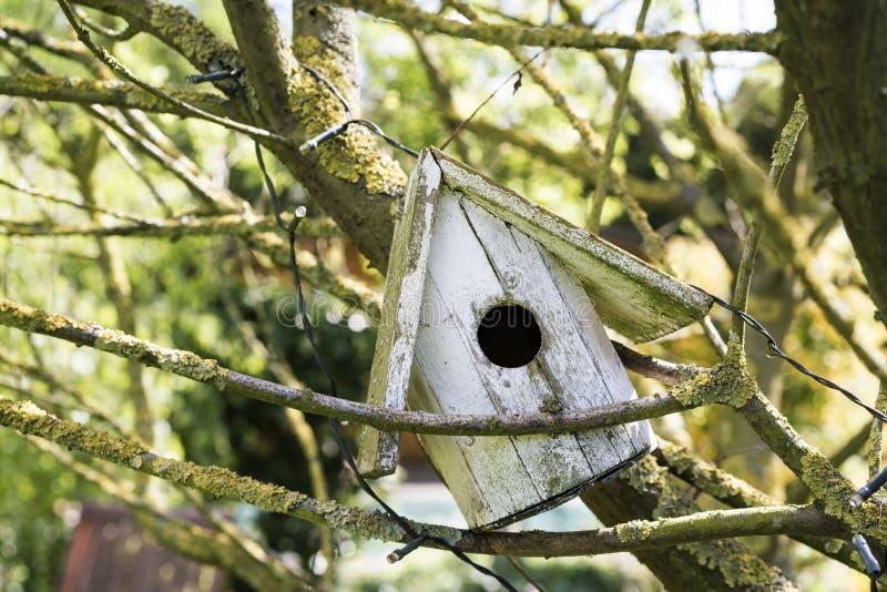 Παλαιό σπιτικό ξύλινο να τοποθετηθεί πουλιών κιβώτιο στοκ εικόνα με δικαίωμα ελεύθερης χρήσης