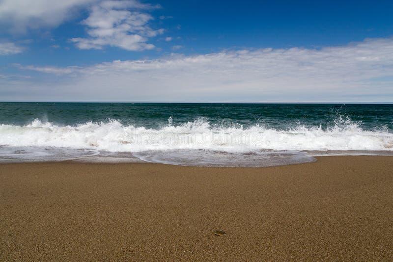 Παλιρροιακός άντεξε, αμμώδης παραλία στοκ εικόνες