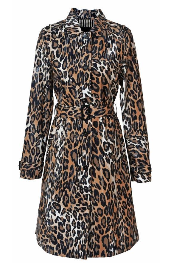 Παλτό λεοπαρδάλεων στοκ φωτογραφία