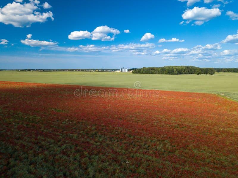 Πεδία παπαρουνών επάνω από την όψη Πολλά κόκκινα λουλούδια ν στοκ φωτογραφία με δικαίωμα ελεύθερης χρήσης