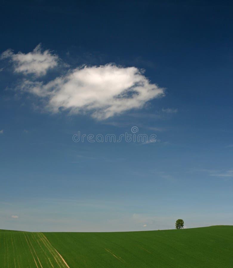 πεδία moravian Χ στοκ φωτογραφία με δικαίωμα ελεύθερης χρήσης