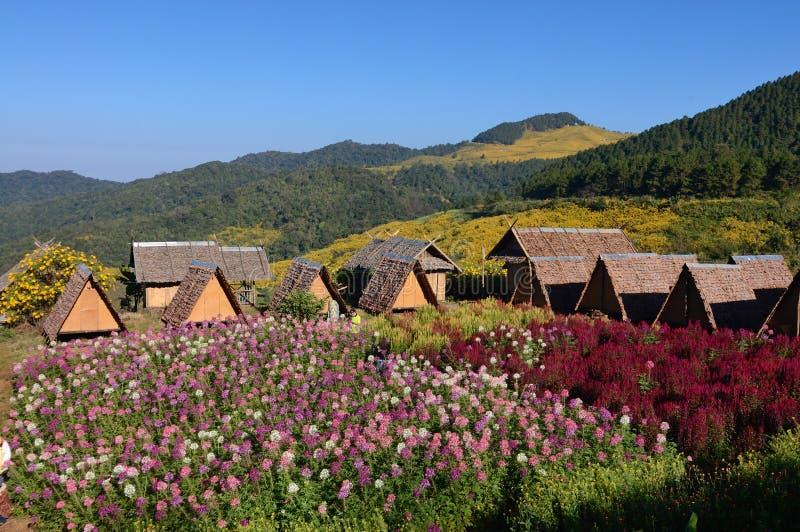 Πεδίο καλυβών και λουλουδιών Thatch στοκ φωτογραφία με δικαίωμα ελεύθερης χρήσης