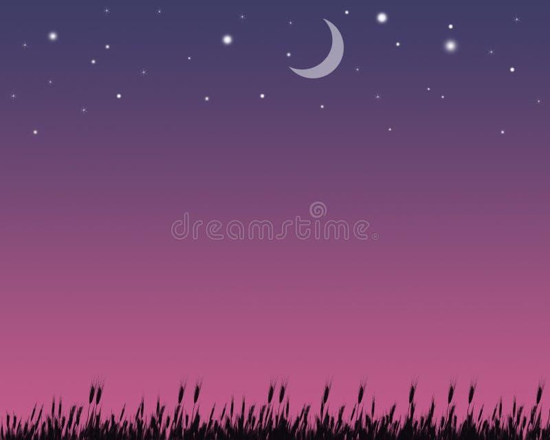 Πεδίο νύχτας στοκ εικόνες