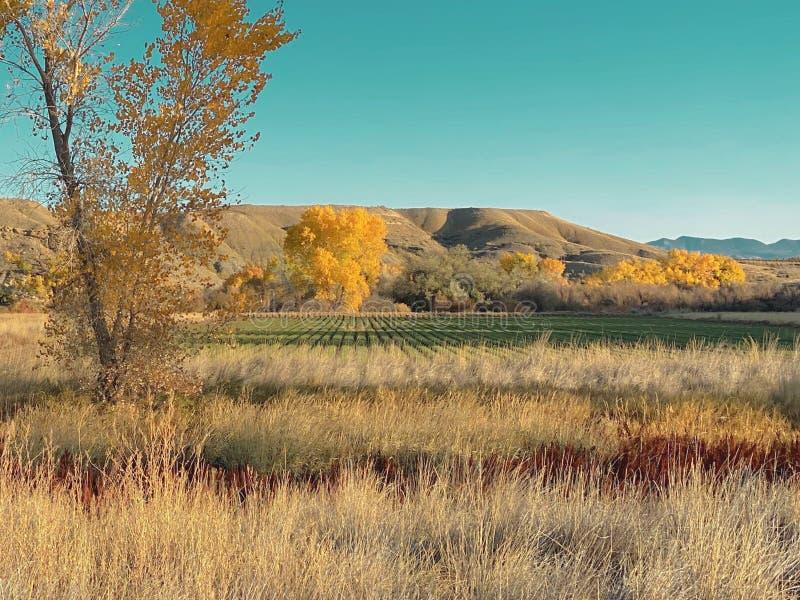 Πεδίο Breezy Mesa και Farm στοκ φωτογραφίες