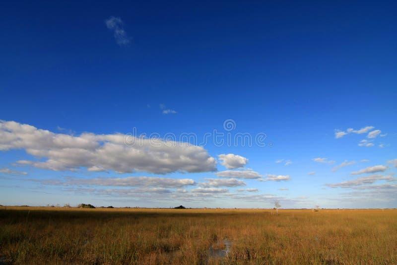 Πεδιάδες Sawgrass στο εθνικό πάρκο Everglades, Φλώριδα στοκ φωτογραφία με δικαίωμα ελεύθερης χρήσης