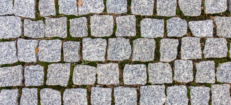 Πεζοδρόμιο με τη χλόη και ξηρά μορφή φύλλων ως ανώμαλο υπόβαθρο σύστασης σχεδίων στοκ φωτογραφία με δικαίωμα ελεύθερης χρήσης