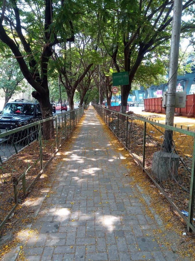 Πεζοδρόμιο που περιβάλλεται από τα δέντρα σε Thane στοκ εικόνα με δικαίωμα ελεύθερης χρήσης