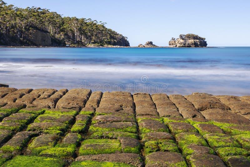 Πεζοδρόμιο Tessellated στον κόλπο πειρατών στοκ φωτογραφία