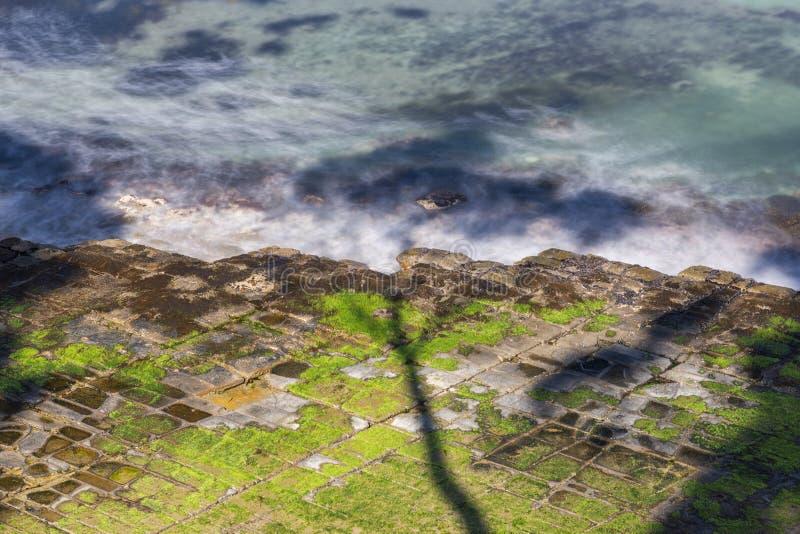 Πεζοδρόμιο Tessellated στον κόλπο πειρατών στοκ εικόνες με δικαίωμα ελεύθερης χρήσης