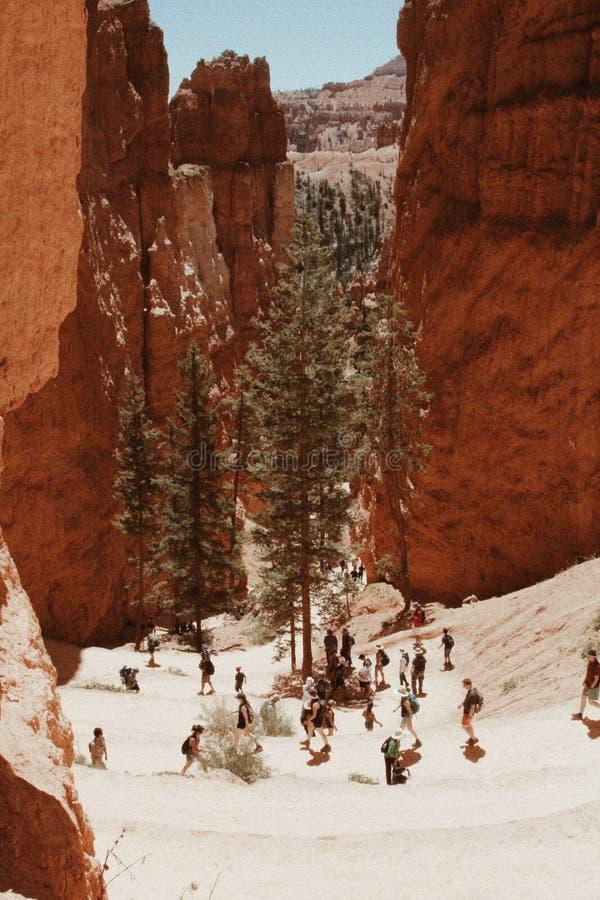 Πεζοπορία μέσω του όμορφου εθνικού πάρκου φαραγγιών του Bryce κατά τη διάρκεια του χειμώνα στοκ εικόνα με δικαίωμα ελεύθερης χρήσης