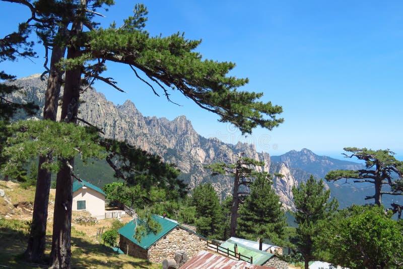 Πεζοπορία στην Κορσική, δέντρα και βραχώδη βουνά, Γαλλία στοκ φωτογραφίες