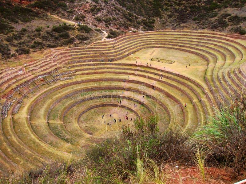 Πεζούλια Inca Moray, Περού στοκ εικόνα