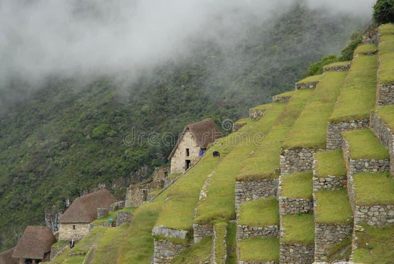 πεζούλια pichu machu στοκ φωτογραφίες με δικαίωμα ελεύθερης χρήσης