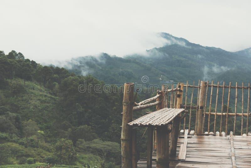 πεζούλι μπαμπού με την άποψη της ομίχλης & του σύννεφου στο βουνό το πρωί στοκ φωτογραφίες με δικαίωμα ελεύθερης χρήσης