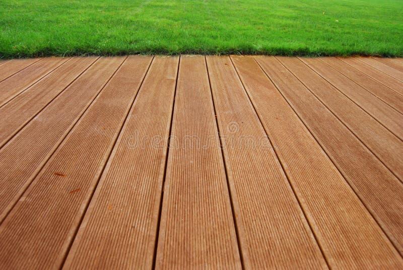 πεζούλι ξυλείας πλατύφυ στοκ εικόνα
